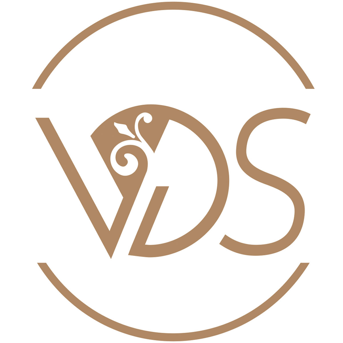 Logo Vichy Destination Santé